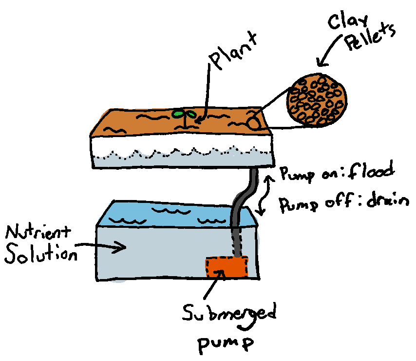 A basic ebb and flow system